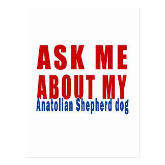 Ask me about my Anatolian Shepherd dog Postcard