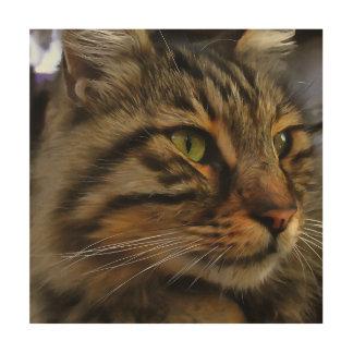 Aslan The Long Haired Tabby Cat Wood Print