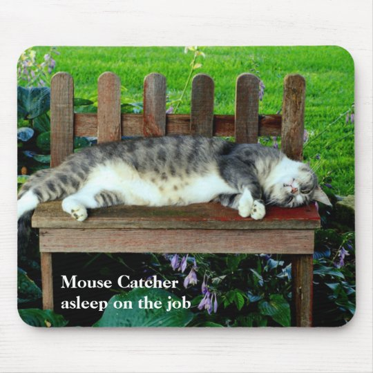 Asleep on the Job Mouse Mat