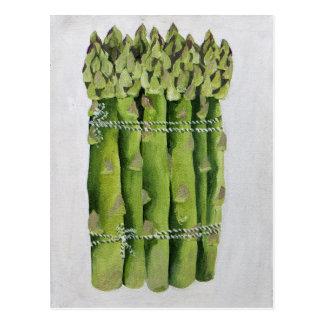 Asparagus 2013 postcard