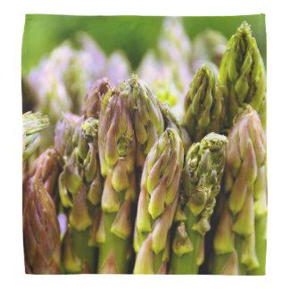 Asparagus Bandana