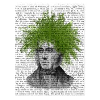 Asparagus Fern Head Plant Head Postcard