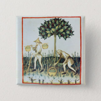 Asparagus Pickers, 13th century 15 Cm Square Badge