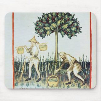 Asparagus Pickers, 13th century Mouse Pad