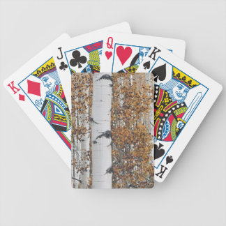 Aspen 10 bicycle playing cards