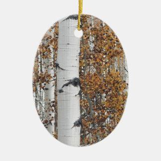 Aspen 10 ceramic oval decoration