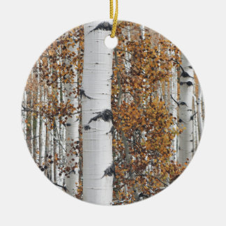 Aspen 10 christmas ornament