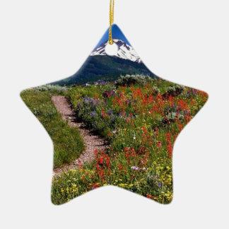 Aspen 2 christmas ornament
