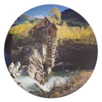 Aspen 3 plate