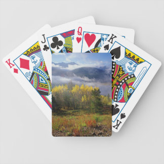 Aspen 4 bicycle playing cards