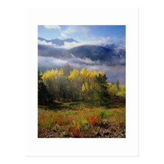 Aspen 4 postcard