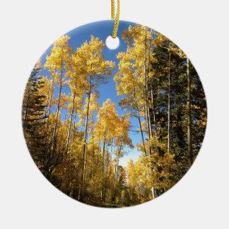 Aspen 5 christmas ornament
