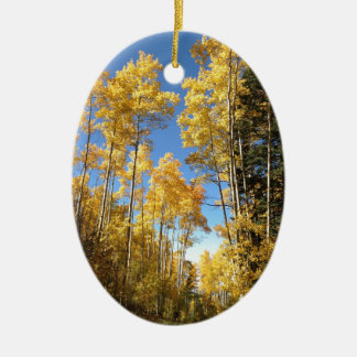 Aspen 5 christmas ornament