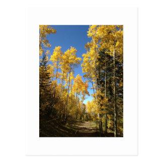 Aspen 5 postcard