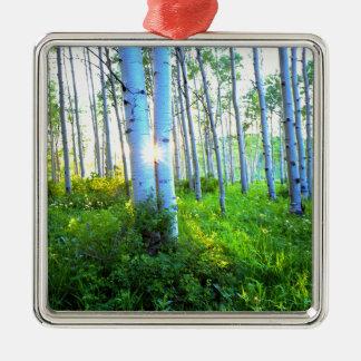 Aspen 7 christmas ornament