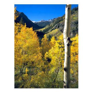 Aspen 8 postcard
