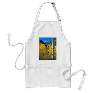 Aspen 8 standard apron