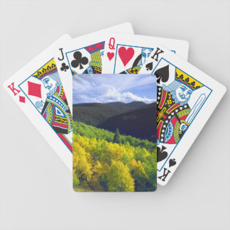 Aspen 9 bicycle playing cards