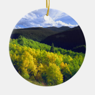 Aspen 9 christmas ornament