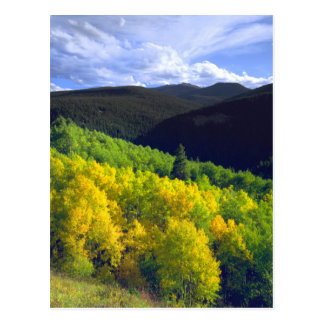 Aspen 9 postcard