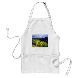 Aspen 9 standard apron