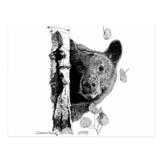 Aspen Bear Postcard