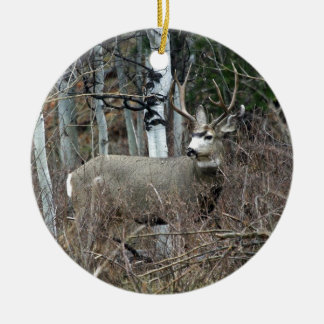 Aspen buck christmas ornament