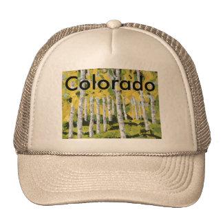 Aspen Calm Trucker Hat