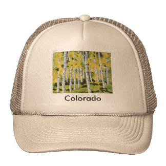 Aspen Calm Hat