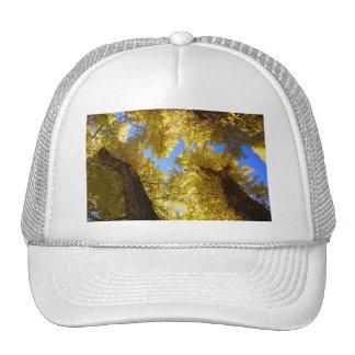 aspen trucker hat