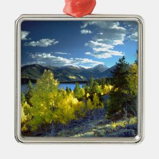 Aspen Christmas Ornament