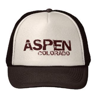 Aspen Colorado simple brown hat