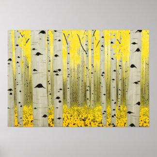 Aspen Grove in Fall Yellow 19 x 13 Poster