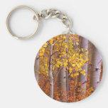 Aspen in Fall Keychains