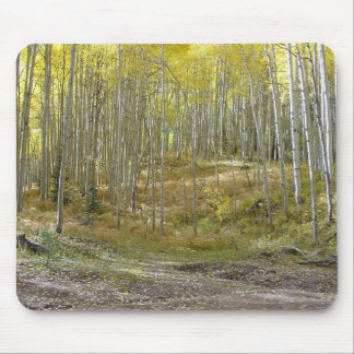 Aspen in Fall Mouse Pad