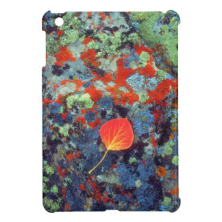 Aspen leaf on a lichen covered rock cover for the iPad mini
