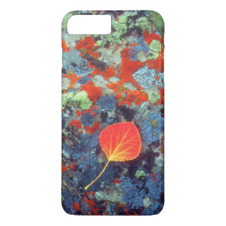 Aspen leaf on a lichen covered rock iPhone 8 plus/7 plus case