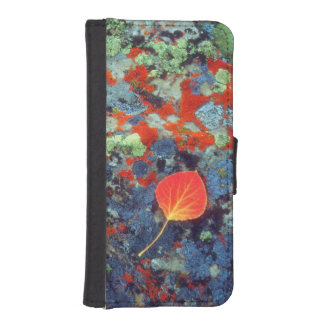 Aspen leaf on a lichen covered rock iPhone SE/5/5s wallet case