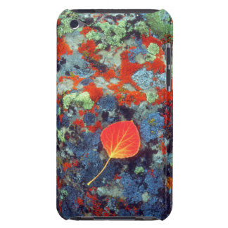 Aspen leaf on a lichen covered rock iPod Case-Mate cases