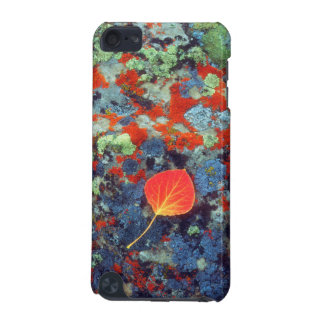 Aspen leaf on a lichen covered rock iPod touch 5G cover