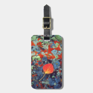 Aspen leaf on a lichen covered rock luggage tag