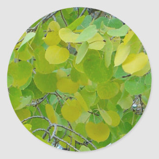 Aspen Leaf Stickers