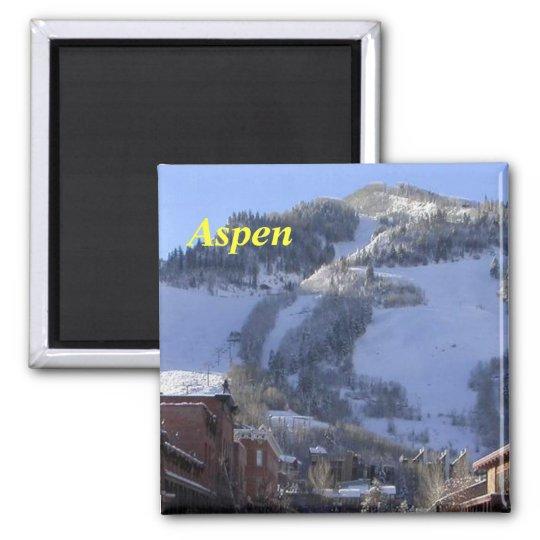 Aspen magnet