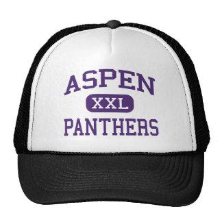 Aspen - Panthers - High School - Robbins Illinois Cap