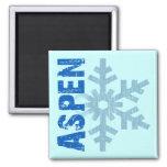 Aspen Refrigerator Magnet