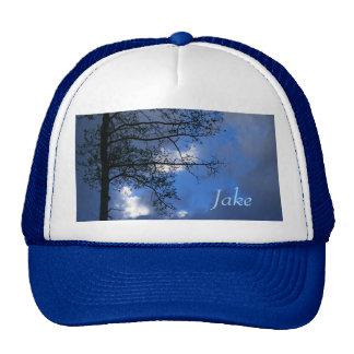 Aspen Spring Evening Trucker Hat