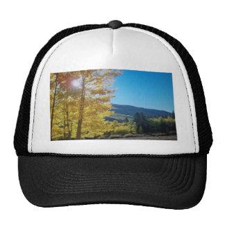 Aspen Sunshine Cap