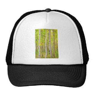 Aspen Tree Forest Autumn Time Portrait Cap