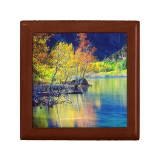 Aspen tree in autumn reflecting in Grant Lake Gift Box