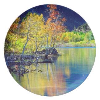 Aspen tree in autumn reflecting in Grant Lake Plate